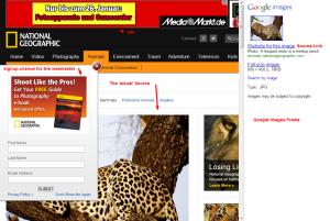 Alte Zielseite der Image Search